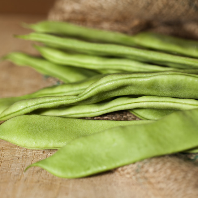 """Runner beans"" stock image"