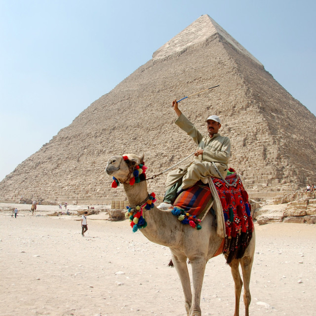 """One man and his camel at Giza"" stock image"