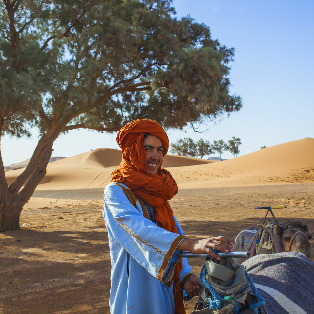 """Camel driver in Sahara"" stock image"