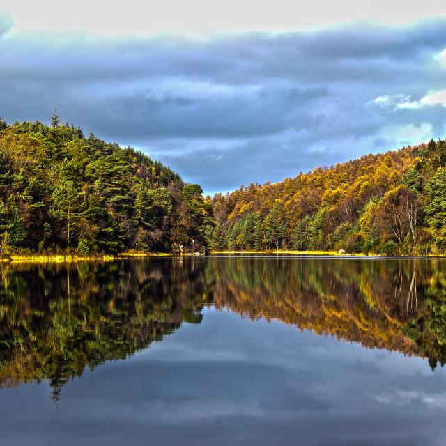 """Forest Lake Landscape Panorama"" stock image"