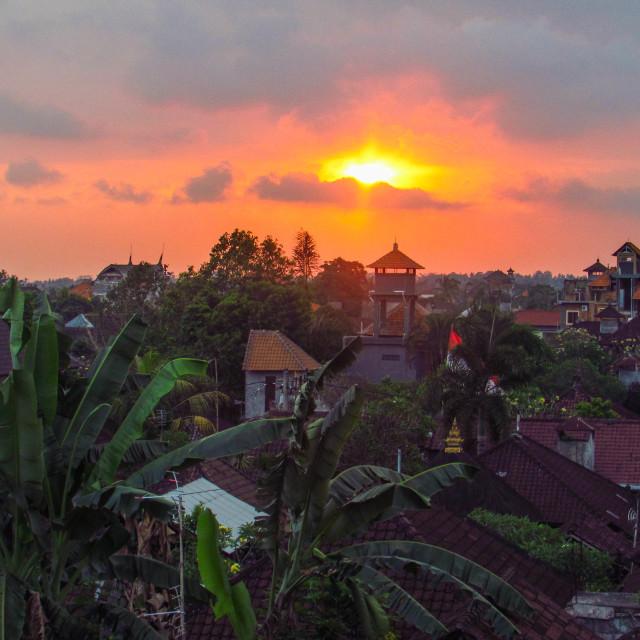 """""""Sunset over Ubud"""" stock image"""