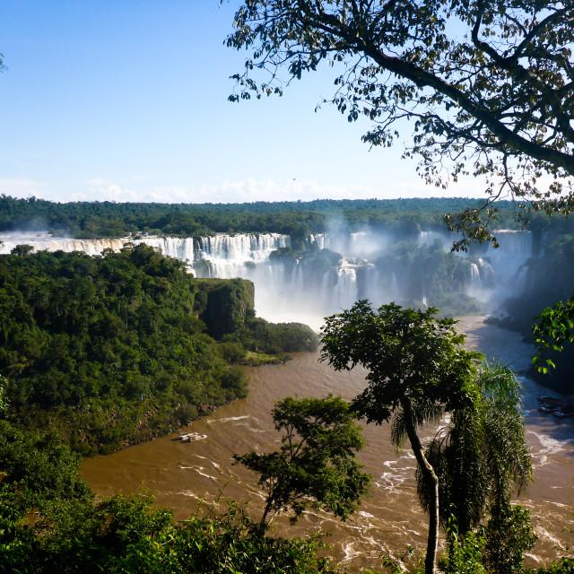 """Calm Iguazu"" stock image"