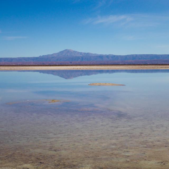 """""""Atacama Salt Flats"""" stock image"""
