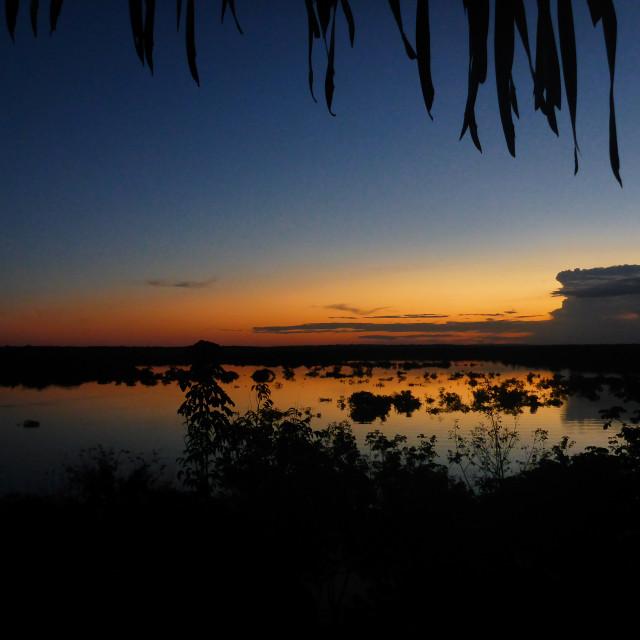 """Amazon Jungle Sunset"" stock image"