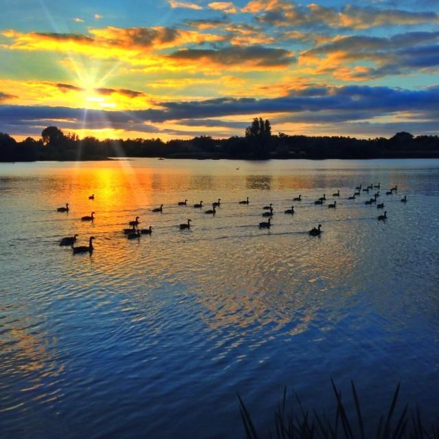 """An evening lake scene"" stock image"
