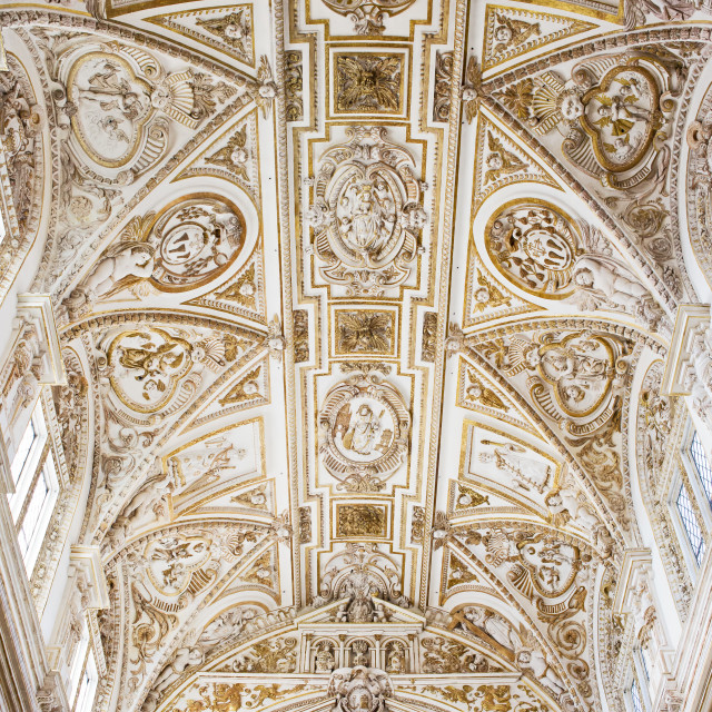 """Mezquita Cathedral Ceiling"" stock image"