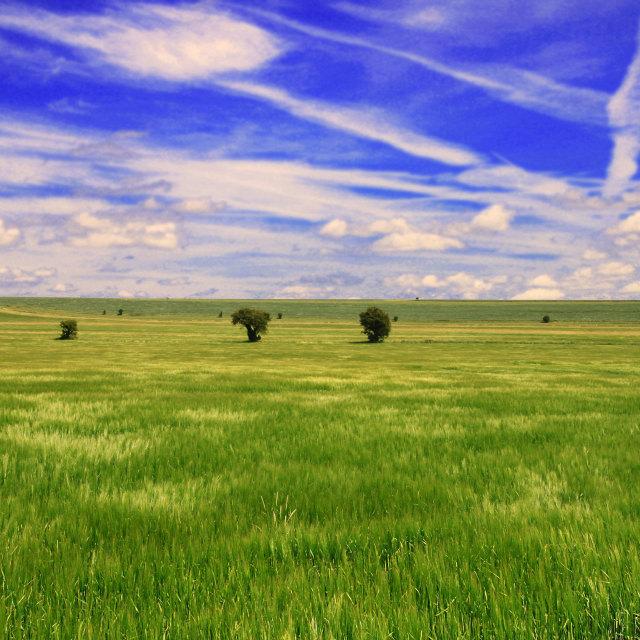 """Landscape scenery"" stock image"
