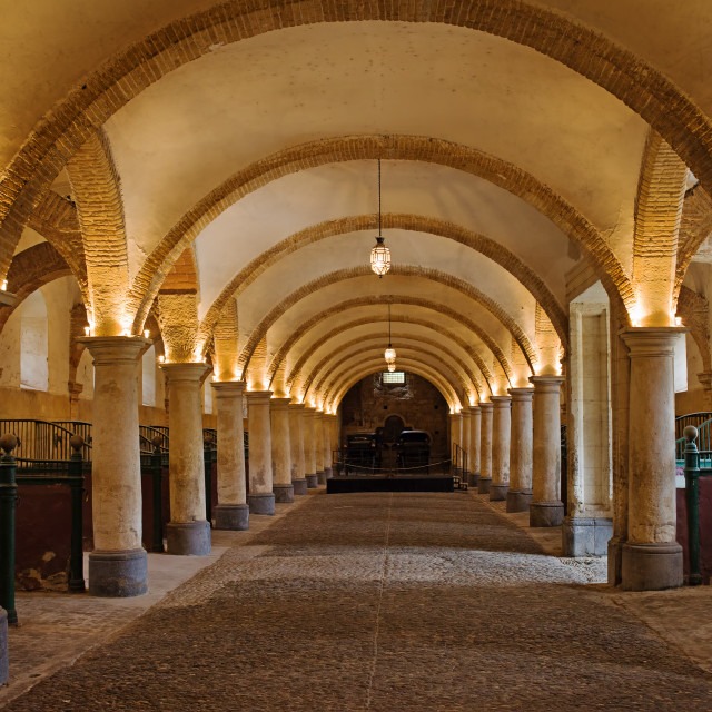 """Royal Stables in Cordoba"" stock image"