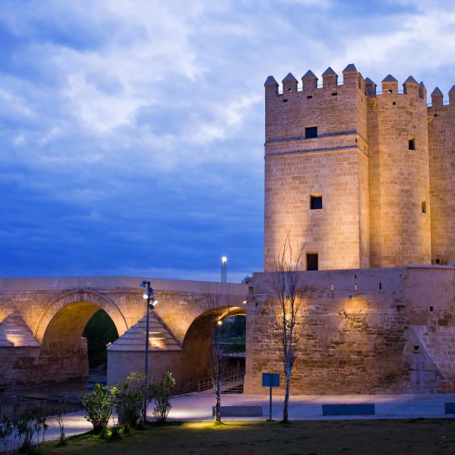 """""""Calahorra Tower and Roman Bridge in Cordoba"""" stock image"""