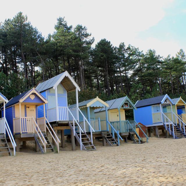 """""""Norfolk coast"""" stock image"""