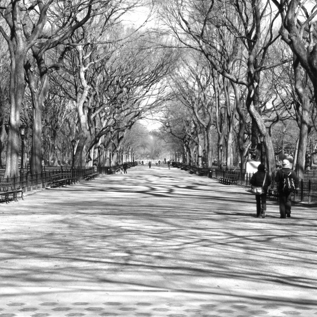 """Avenue"" stock image"