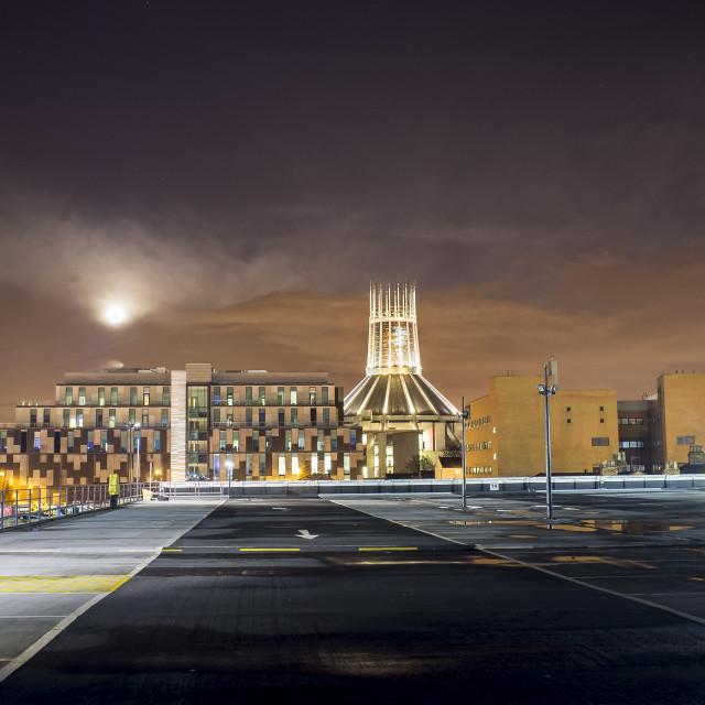 """Metropolitan Cathedral"" stock image"