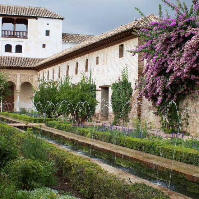 """Palacio de Generalife"" stock image"