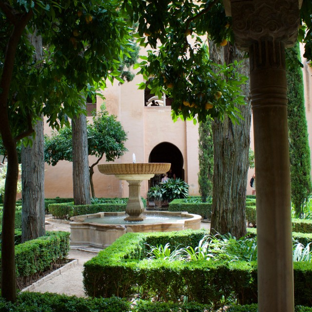 """Orange tree and fountain in the Alhambra"" stock image"