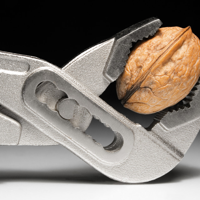 """Metal Pliers and Walnut"" stock image"