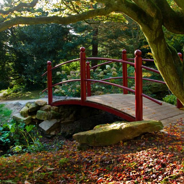 """""""Red bridge"""" stock image"""