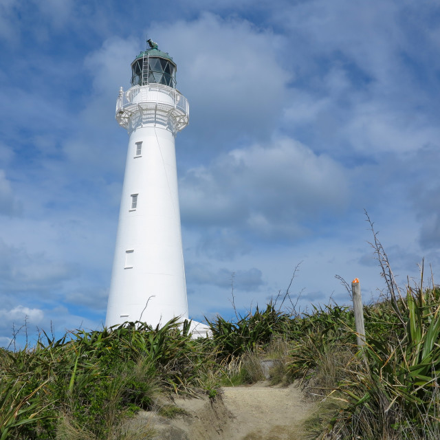 """Castlepoint lighthouse."" stock image"