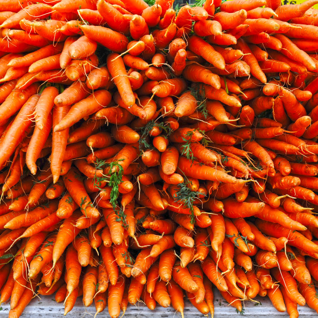 """Fresh Carrots"" stock image"
