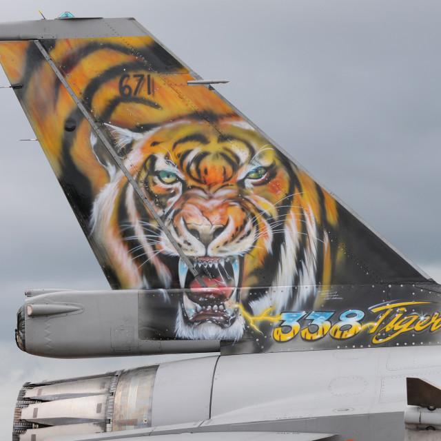 """Tiger Fighter Jet"" stock image"