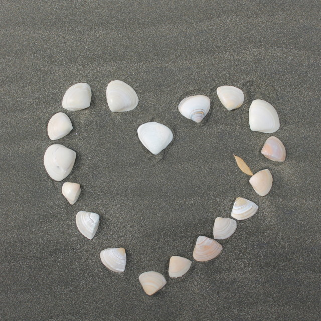 """love the beach"" stock image"