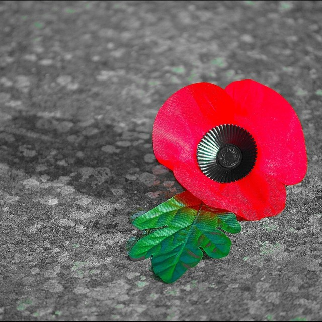 """""""Remembrance"""" stock image"""
