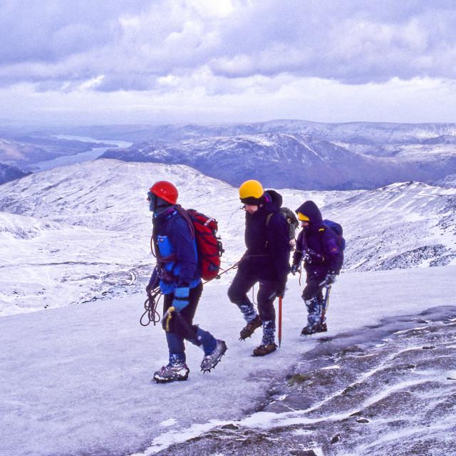 """Ice walk"" stock image"