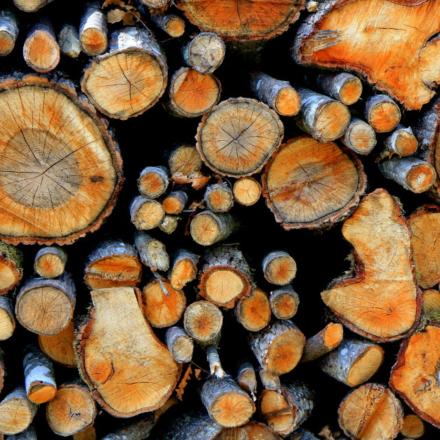 """Logs"" stock image"