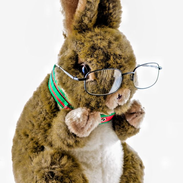 """Professor Hop"" stock image"