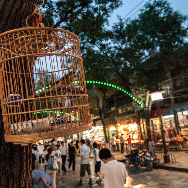 """Xi'an birdcage at night"" stock image"