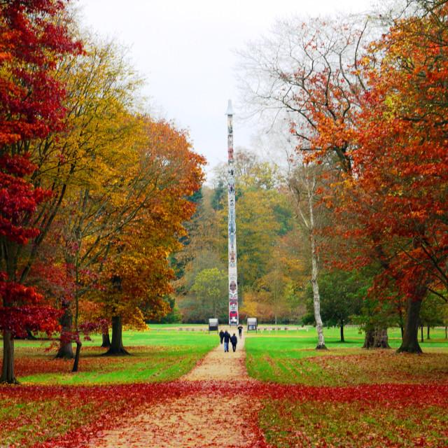 """Autumn in Virginia Water"" stock image"