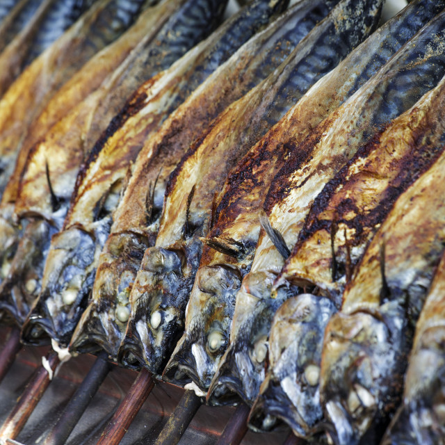 """Grilled Fish"" stock image"