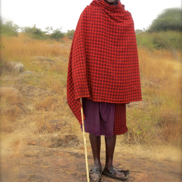 """Maasai guide"" stock image"