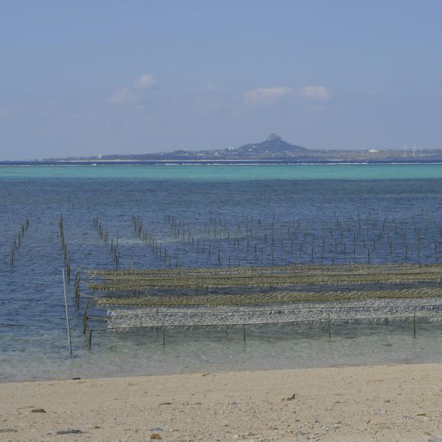 """okinawa beach"" stock image"