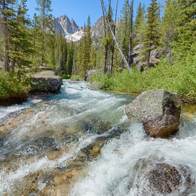 """Redfish Lake Creek, Sawtooth National Recreation Area, ID"" stock image"