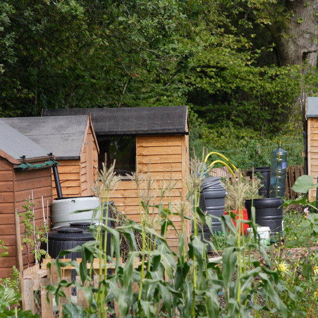 """Allotments"" stock image"