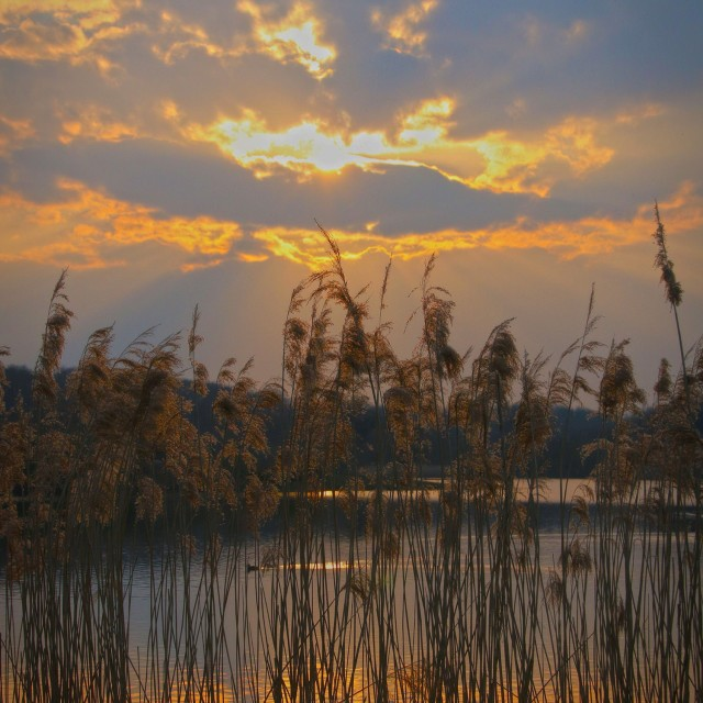 """""""Evening at the lake"""" stock image"""