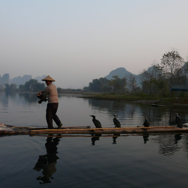 """Li river evening fish"" stock image"