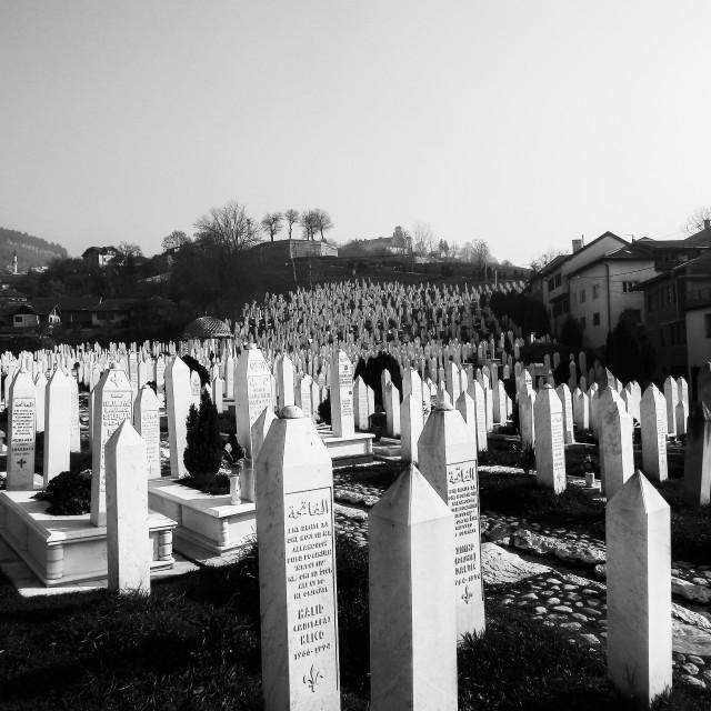 """""""Sarajevo graveyard"""" stock image"""