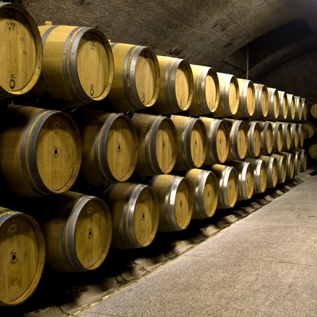 """Wine barrels in storage"" stock image"