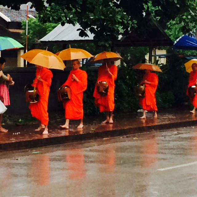 """Monks of Luang Prabang"" stock image"