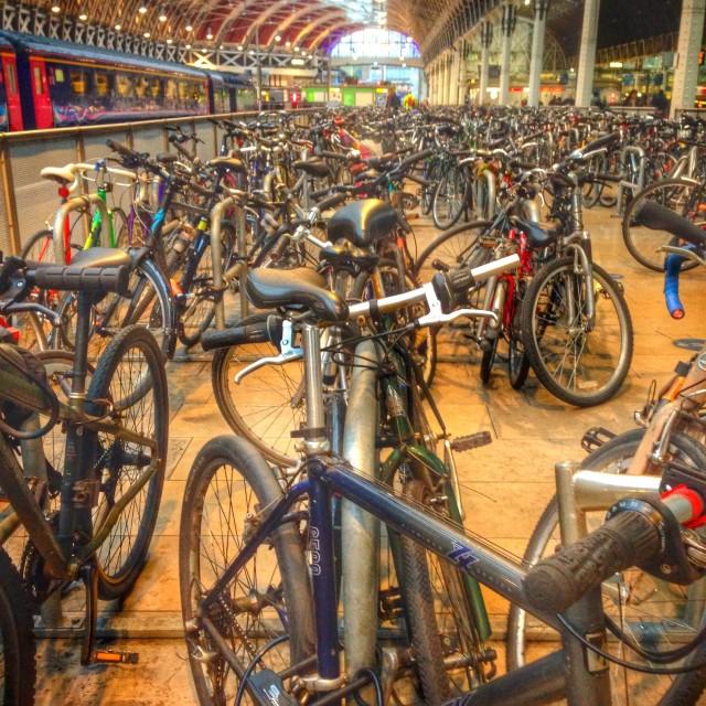 """""""Dozens of bicycles"""" stock image"""