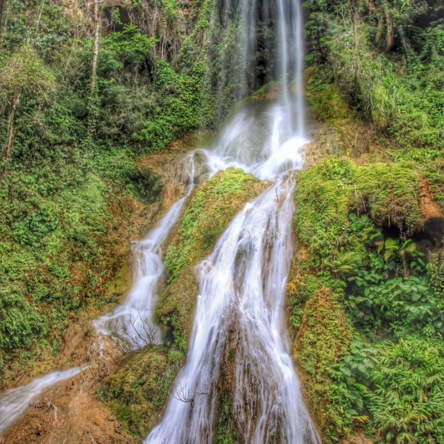 """Cuban rainforest waterfall"" stock image"