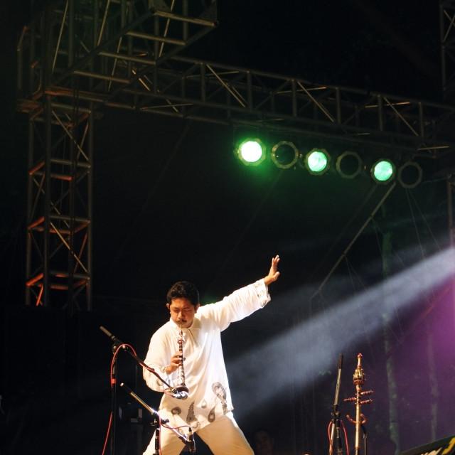 """""""Mohd Kamrulbahri Hussin of Asika at Rainforest World Music Festival"""" stock image"""