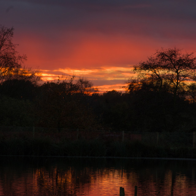 """Sunset at Pensthorpe"" stock image"