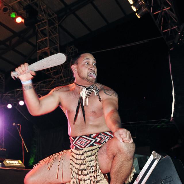 """""""Maori warrior at Rainforest World Music"""" stock image"""