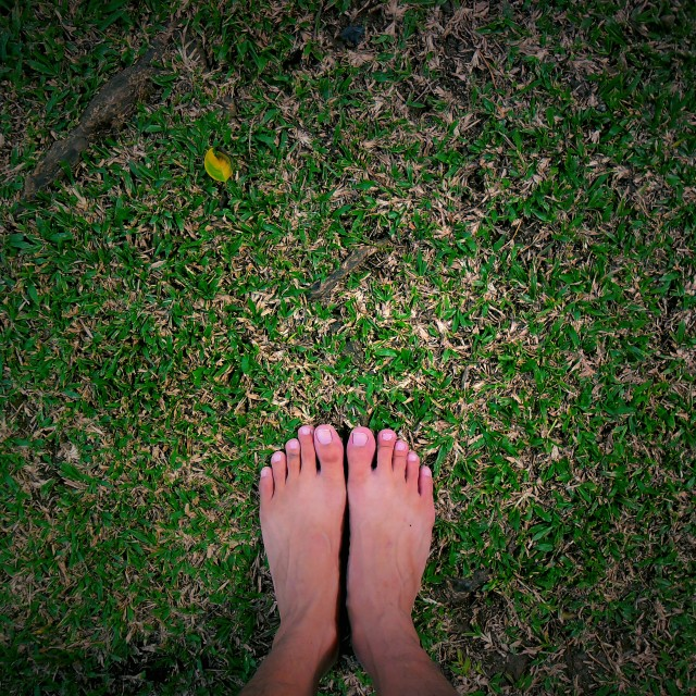 """feet on grass"" stock image"