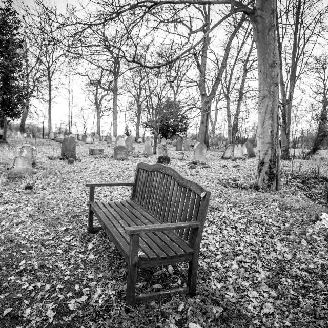 """Bench In Rural Churchyard"" stock image"