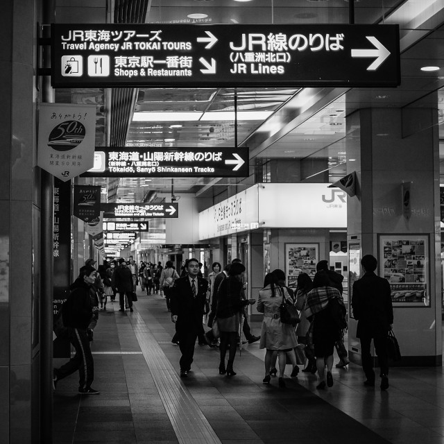 """Tokyo Station"" stock image"