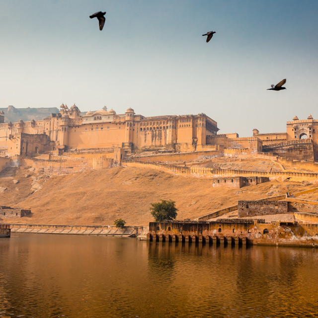 """Amer Fort in India"" stock image"