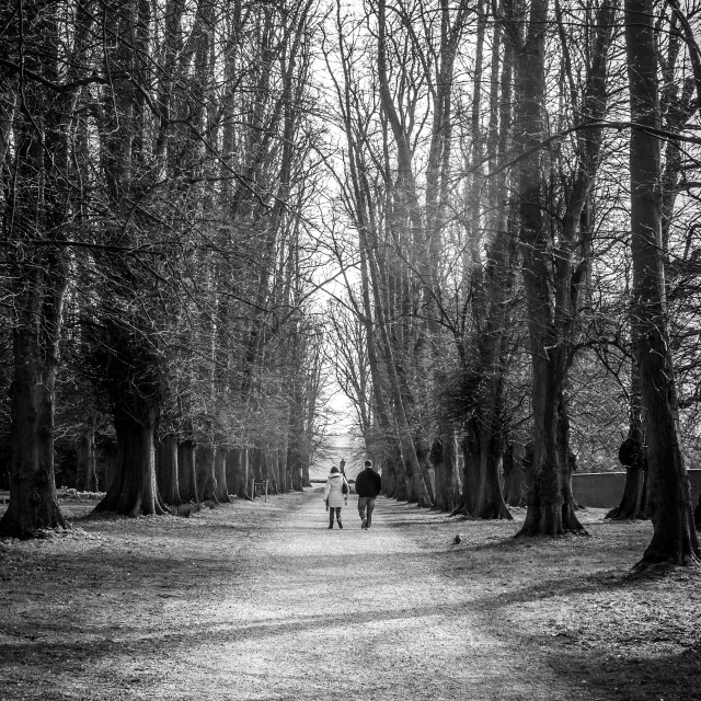 """End Of Winter Walk in Yorkshire B&W"" stock image"